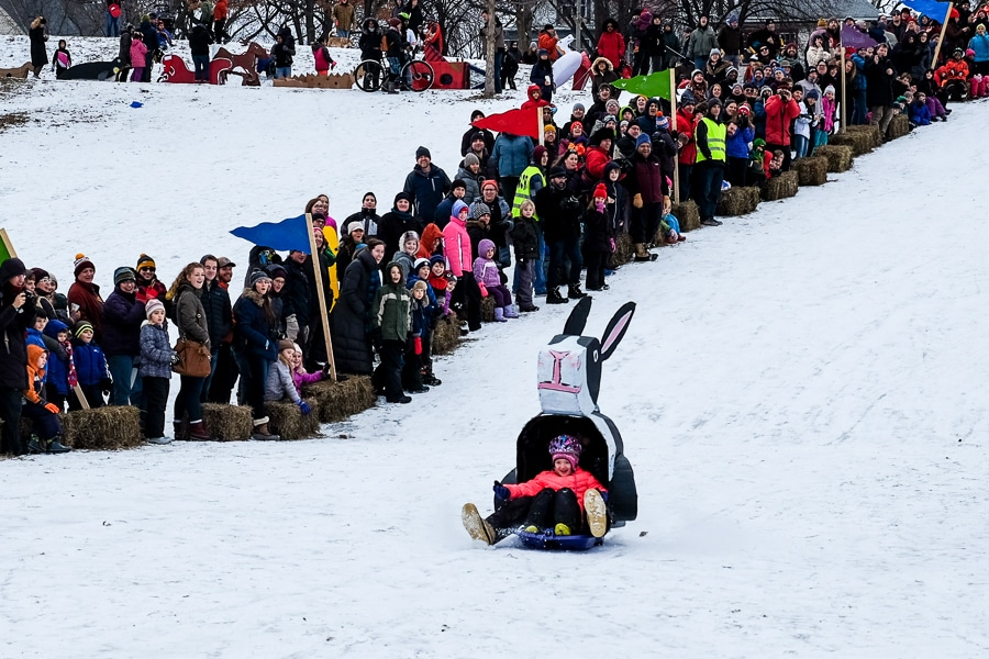 Art Sled Rally 2017